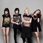 2NE1 - Fire (Instrumental)