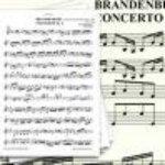 Karel Brazda & Philharmonia Slavonica