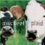 Mackeel - Star of the County Down