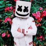 Marshmello feat. Omar Linx