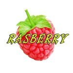 Rasberry - Shame (feat. EVERLAKE)